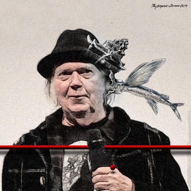 Neil Young - slika Zorana Mujbegovića