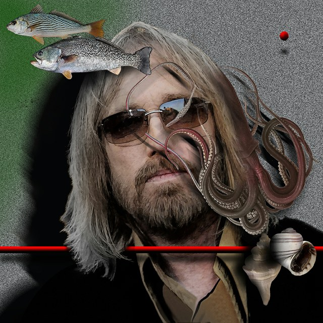 Tom Petty - slika Zorana Mujbegovica